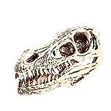 SCREEPY Lebensecht Resin Velociraptor SchäDel Fossil Simulation Dinosaurier Kopf Modell Geeignet FüR Medizinische Lehre Bar Dekoration PersöNlichkeit Dekor PersöNliche Sammlung