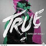 Songtexte von Avicii - True (Avicii by Avicii)