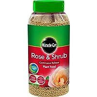 Miracle-Gro 1 kg de liberación rápida continua rosas y comida de arbusto con forma