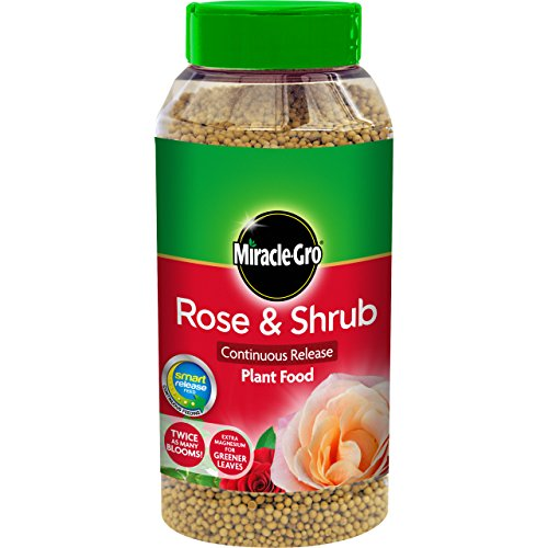 miracle-gro-1kg-continuous-release-rose-and-shrub-food