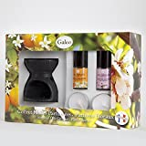 Koffer Ölbrenner Duftölen–Orangenblüte & Kirschblüte