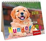 Für kleine Hundefans 2019: MiniMonatskalender