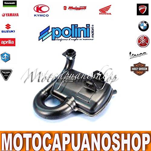 200.2018Expansion Auspuff Auspuff POLINI Original Vespa PX 125–150