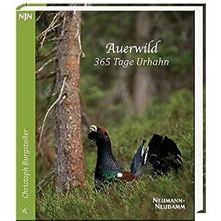Auerwild – 365 Tage Urhahn