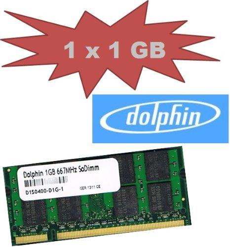 Mihatsch&Diewald Dolphin 1Gb SoDimm 667 Mhz Pc-5300 Speicher Memory 200pin DDR2 Notebook Laptop 1024Mb Ram auch passend für Apple MacBook Pro 3,1 4,1 2007 / 2008 Mac mini 2,1 iMac 7,1 5,1 6,1 3,1 Late 2007 2008 (2008 Mac Pro Ram)