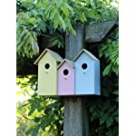 garden mile® Colourful Novelty 3 In 1 Garden Bird Houses Highly Detailed Predator Proof Bird Nesting Boxes For Small… 16