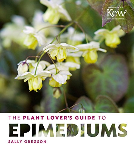 the-plant-lovers-guide-to-epimediums-plant-lovers-guides