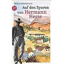 Auf den Spuren von Hermann Hesse: Calw, Maulbronn, Tübingen, Basel, Gaienhofen, Bern und Montagnola (insel taschenbuch 4454)