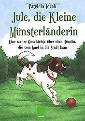 Jule, die Kleine Münsterländerin