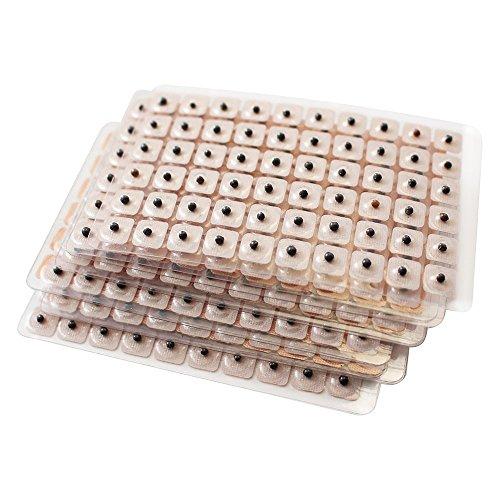 Dragon Acupuncture Semillas de Oreja Vaccaria Paquete de Reposición de 600 Cuentas