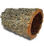 Corteccia di sughero: tubi sughero, 30 cm, altezza interna 15-20 cm circa
