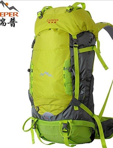 ZQ 45L L Tourenrucksäcke/Rucksack / Wandern Tagesrucksäcke / Rucksack Camping & Wandern / Klettern / Reisen DraußenWasserdicht / Red