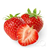 Erdbeer Liquid 10ml für E-Zigarette/Shisha / 0mg Nikotin