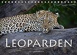 Leoparden - groß und klein (Tischkalender 2018 DIN A5 quer): Faszinierende Aufnahmen dieser wunderschönen Raubkatze (Monatskalender, 14 Seiten ) ... [Kalender] [Jun 29, 2017] Styppa, Robert