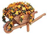 Tradicional Madera Rústico decorativa Carretilla macetero