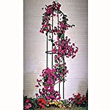 Ranksäule Rankhilfe Blumengitter Rankgestell