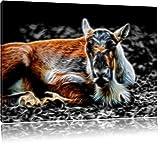 Dark junger Elch schwarz/weiß Deluxe Format: 120x80 cm auf Leinwand, XXL riesige Bilder fertig gerahmt mit Keilrahmen, Kunstdruck auf Wandbild mit Rahmen, günstiger als Gemälde oder Ölbild, kein Poster oder Plakat