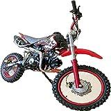Pit Bike 125CC 14/12 SKULL / Dirt Bike con motore a 4 tempi e avviamento elettrico. Mini...