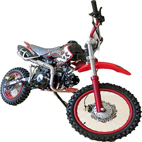 Pit Bike 125CC 14/12 SKULL/Dirt Bike con motor de 4 tiempos y arranque eléctrico. Mini moto de cross para adulto...