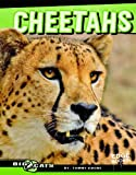 Cheetahs (Edge Books: Big Cats)