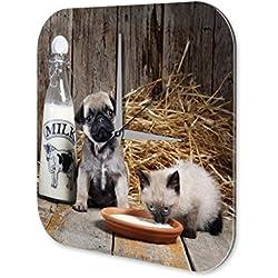 Reloj De Pared Pug taza de leche de gato
