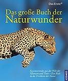 Das große Buch der Naturwunder: Faszinierendes aus der Welt der Pflanzen und Tiere - Ein Blick in die Trickkiste der Natur