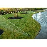 """Rain Bird 5004-PC 3.0 Irrigatore incassato / Irrigatore per prati 3 4"""" - Irrigazione Giardino Professionale"""