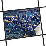 creatisto Fliesensticker Dekoraufkleber | Fliesen-Aufkleber Folie Sticker selbstklebend Küche renovieren Bad Deko Küche | 25x20 cm Design Motiv Fish Swarm - 1 Stück