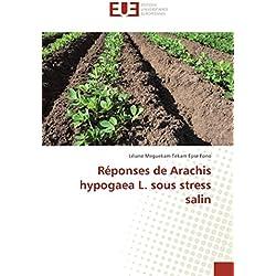 Réponses de Arachis hypogaea L. sous stress salin
