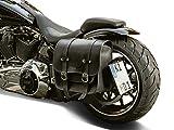 Seitlicher Kennzeichenhalter 180x200 mm für Harley Davidson Softail (bis 2017) DeLuxe FLSTN inkl. TÜV-Teilegutachten, LED-Kennzeichenbeleuchtung und Montagematerial.