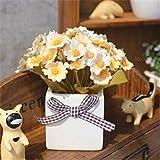 Bianco: Saldi!100 semi di Argyranthemum Frutescens Marguerite Daisy Seeds Semi di fiori, così belli, fioritura lunga