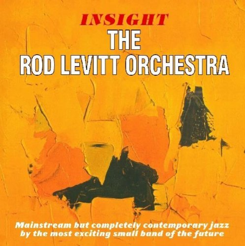 Insight / Solid Ground by ROD LEVITT (2010-04-06) -
