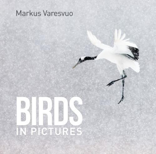 BIRDS IN PICTURES por Markus Varesvuo
