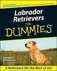 Labrador Retrievers for Dummies (Howell dummies series)