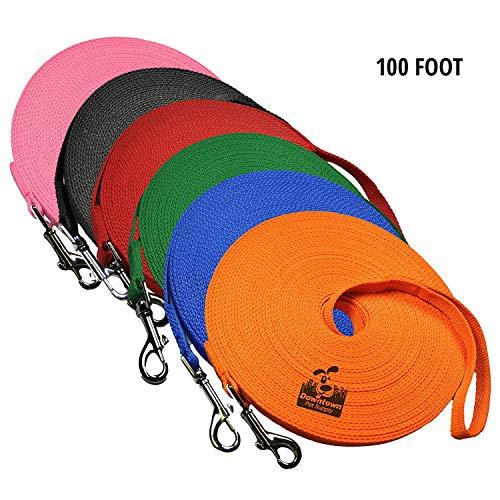 Unbekannt Downtown Pet Supply Hund/Welpen, Recall Training gehorcht Agility Leine, 100 Foot, Orange