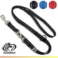 [Gesponsert]FEUERWOLF Hundeleine 3-fach längenverstellbar 2 Meter lang - Doppelleine -  Für mittlere und große Hunde - Robust und stabil - Beidseitig reflektierend - schwarz