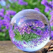 Kicode terrario Claro La curación de la bola redonda Vaso Artificial Cristal Esfera hogar Decoración