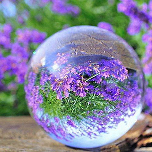 Kicode terrario Claro La curación de la bola redonda Vaso Artificial