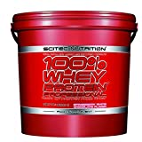 Single Player Modus The Great Selection of Proteins 100% Whey Protein Professional 5000g Erdbeere Weiße Schokolade Top-energy24 Spezialangebot