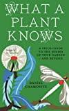 What a Plant Knows: A Field Guide To The Senses Of Your Garden - And Beyond