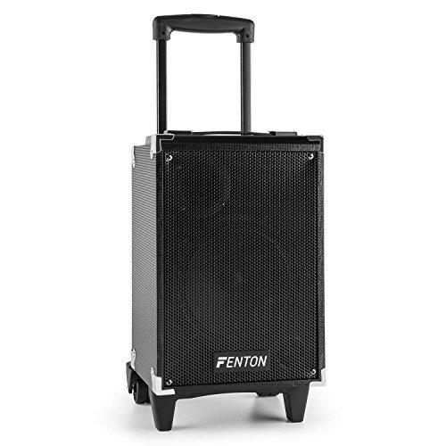 Fenton ST050 Sistema de sonido transportable Bluetooth (40W, entrada USB, micro SD, altavoz de graves de 6.5', portátil, micrófono inalámbrico)
