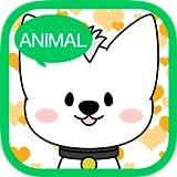 Portrait shop - animal