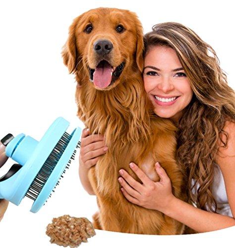 Longwu Haustiere Edelstahl Nadel Bürste/Kamm,Pet Zupfbürste,Reinigung & Pflege-Ausfallen,Schnitt,deShedding-Pflegewerkzeug für Katzen,Kaninchen,Hunde Pink