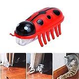 Womdee Katzenspielzeug zum Zerreißen von Katzen, angetrieben, schnell bewegend, Mikro-Robotik-Käfer-Spielzeug, Katzenspielzeug für die Unterhaltung Ihrer Haustiere rot