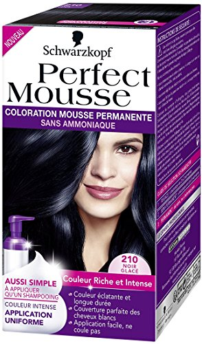 schwarzkopf perfect mousse coloration permanente 210 noir glac 35 ml - Mousse Colorante Schwarzkopf