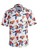 APTRO Herren Hemd Strandhemd Hawaiihemd Kurzarm Urlaub Hemd Freizeit Reise Hemd Party Hemd Vogel BT018 XL