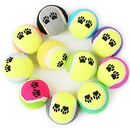 Hund Tennis Ball Gun Launcher Squeaky Bälle Pet Play Fetch Throw Outdoor Spielzeug (Essbare Gun)