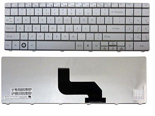 qinlei Laptop-Tastatur für Gateway NV52 NV53 NV54 NV56 NV58 NV59 NV73 NV78 NV79 US-Layout, Silberfarben (Tastatur Gateway Nv53)