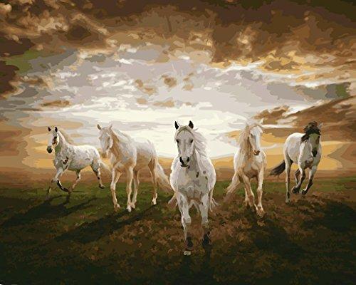 YEESAM ART Neuerscheinungen Malen nach Zahlen für Erwachsene Kinder - Galopp Pferd 16 * 20 Zoll Leinen Segeltuch - DIY ölgemälde ölfarben Weihnachten Geschenke