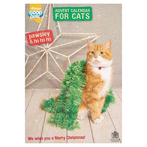 Calendario dell'avvento per gatti